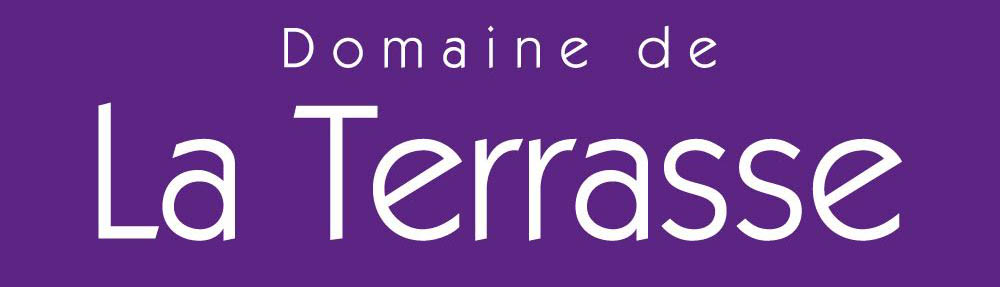 domaine-logo-site
